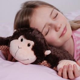 Cojin-Almohada Amigo. Pillow Friends