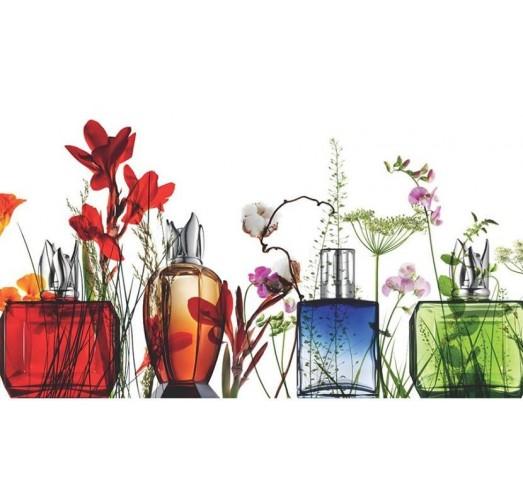 Adornos y Complementos decorativos en Cristal